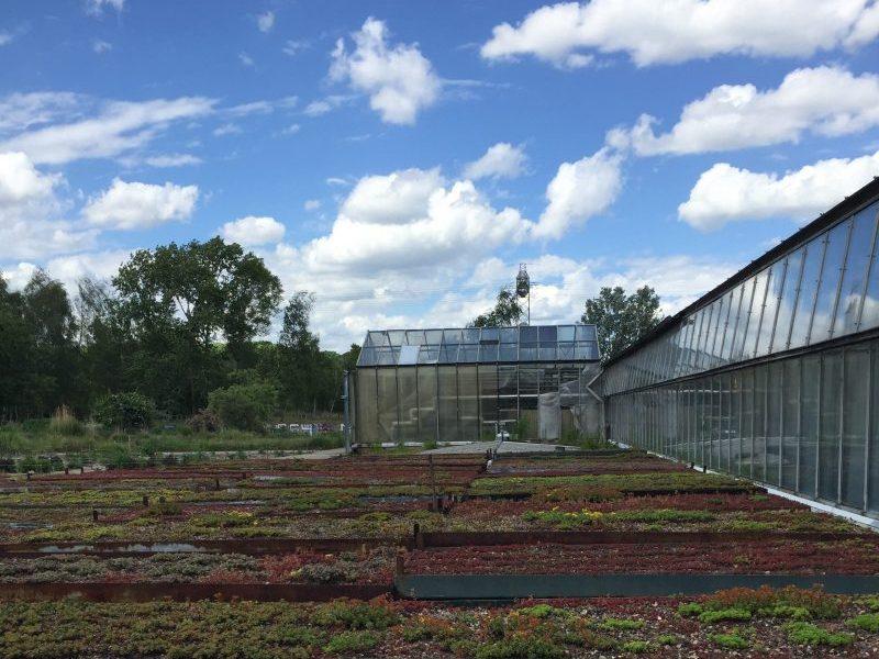 Farm Z.Munizza