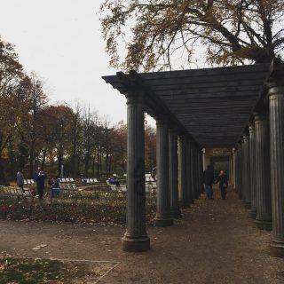Berlino Explorer consiglia: Bürgerpark Pankow. 🍂 Info su tour nella prossima Newsletter. 📩 Non sei ancora iscritto? link in bio #news #newsletter #berlinoexplorer #berlinotour #pankow