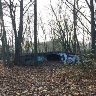Berlino Explorer consiglia: Autunno in Schönholzer Heide. 🍂 Luna Bunker. Sapete perché veniva chiamato così questo bunker? Ve lo racconto nella prossima Newsletter 📩 per iscriversi seguire il link in bio. #berlin #berlino #berlinotour #berlinoexplorer #pankow